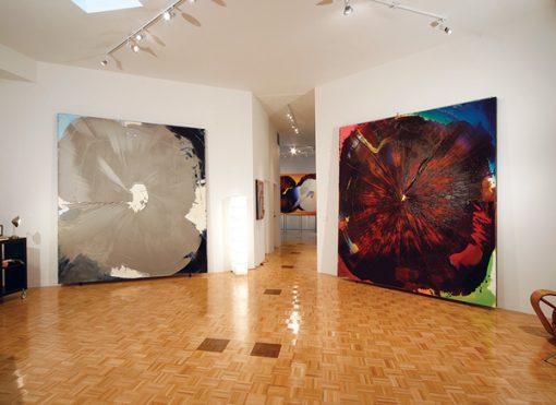 Drapell Gallery Plutonium and Iron