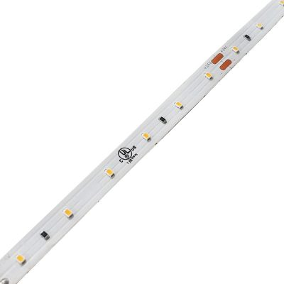 Medium Brightness LED Strip