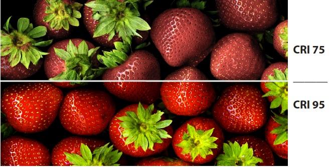 strawberries w cri notations lumicrest high cri led lighting